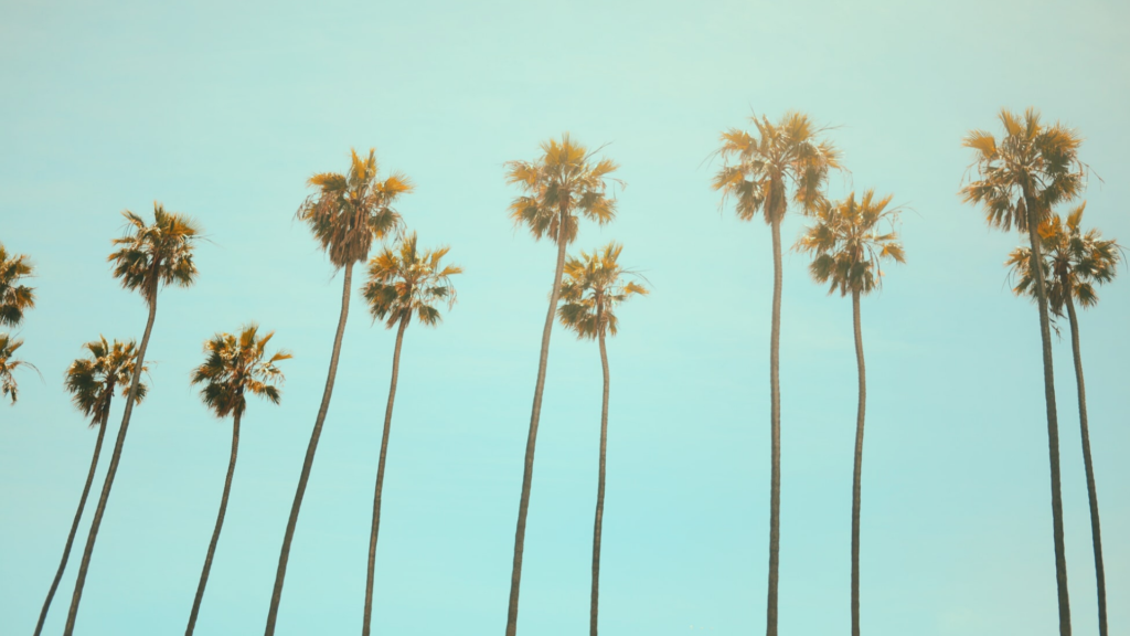 Bañadores 2020, las tendencias se inspiran en Coachella